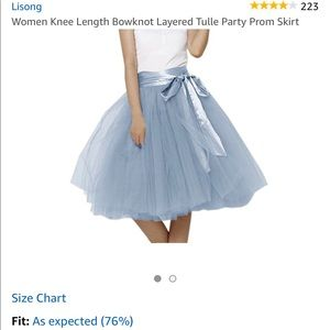 Dresses & Skirts - Blue Tulle Skirt with Sash